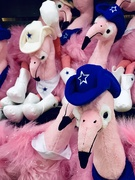 24th Mar 2019 - A Flamboyance of Flamingos