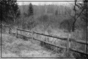 24th Mar 2019 - A Break in the Fence