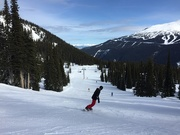 16th Mar 2019 - Gorgeous Day Up Whistler!