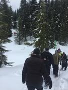 14th Mar 2019 - Work Snowshoeing Trip