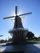 25th Feb 2019 - Dutch style windmill  FOXTON   NZ