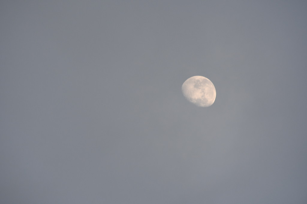 The Moon - 7.12am by kgolab