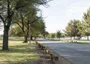25th Mar 2019 - Streets of Canberra - Wendouree Drive