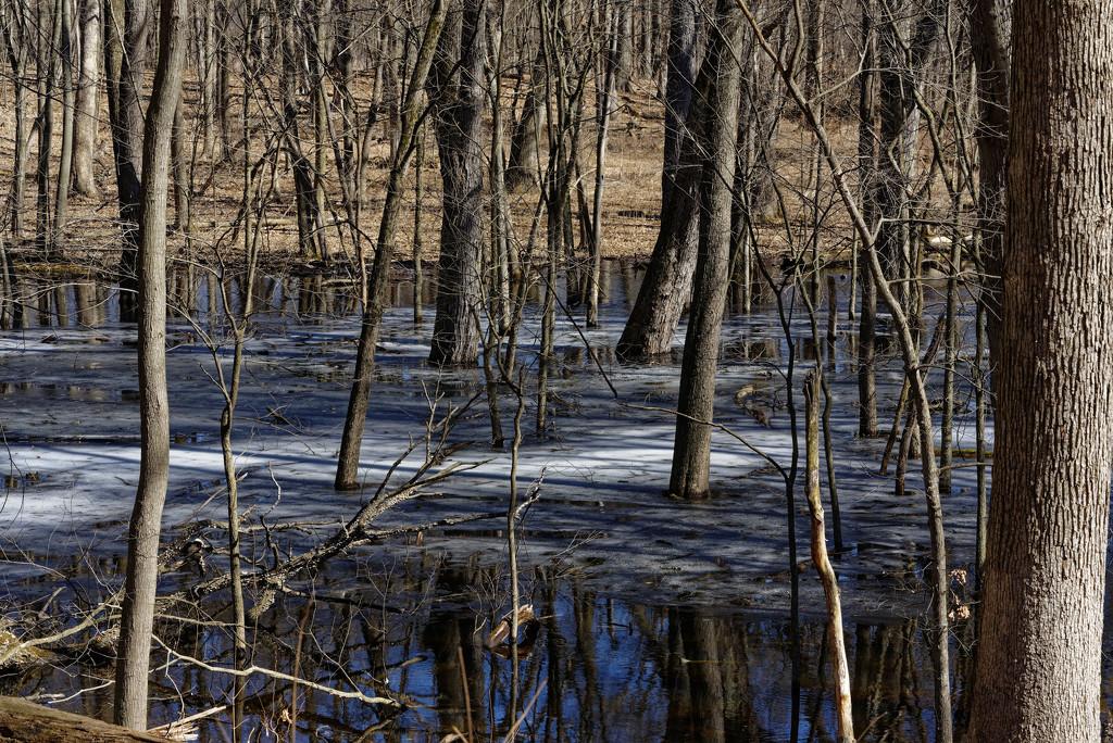 melting lake by rminer