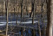25th Mar 2019 - melting lake