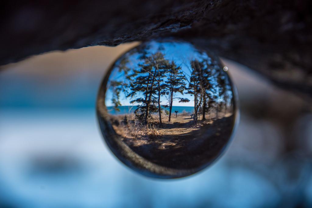 Woods to the Ocean by dianen