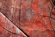 25th Mar 2019 - Rust, Vines and Faded Wood