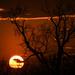 Kansas Sunset 3-25-19