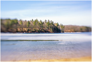 26th Mar 2019 - Beautiful day in early Spring at Walden Pond