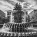 One More Fountain on Charleston's Waterfront