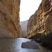 Majestic Santa Elena Canyon