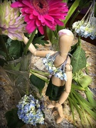 25th Mar 2019 - Woody grows a tropical garden