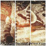 19th Mar 2019 - An Apostrophe With Fur