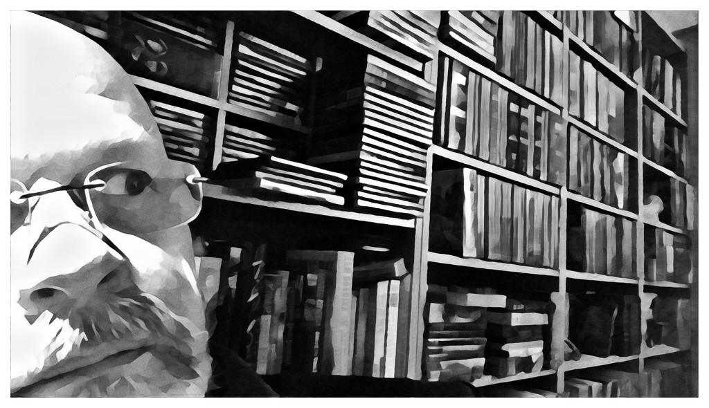 Life On A Half-Shelf... by bankmann