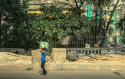 28th Mar 2019 - Kolkata: Taking the load