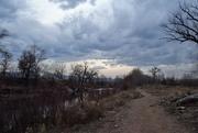 27th Mar 2019 - Atmospheric Afternoon