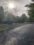 28th Mar 2019 - Streets of Canberra - Murray Crescent