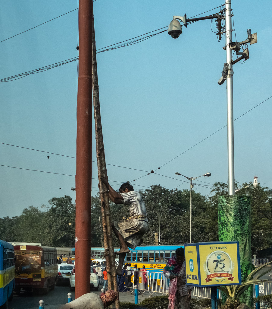 Kolkata: who needs a ladder? by golftragic