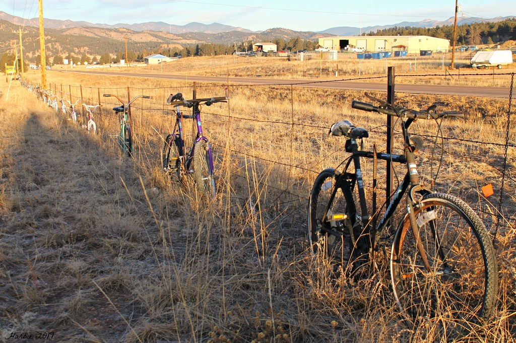 Bicycle Fence by harbie