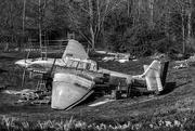 30th Mar 2019 - Crash Landed..