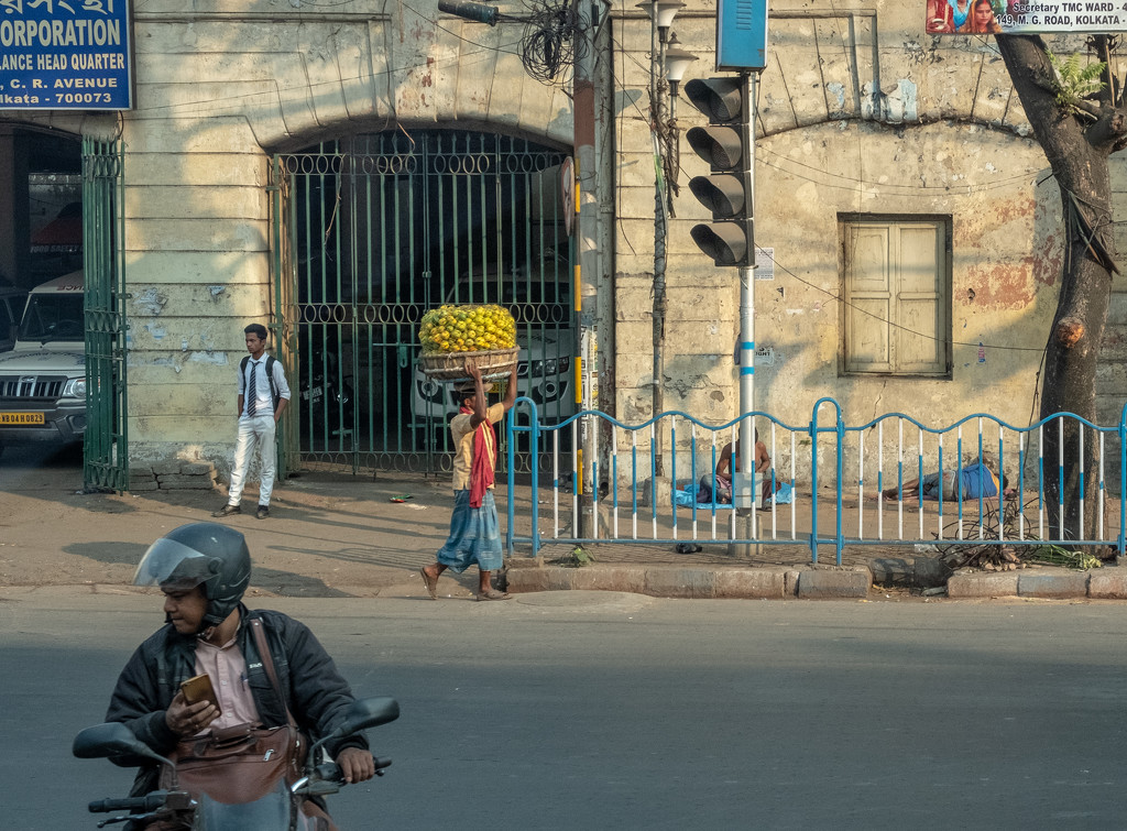 Kolkata: carrying oranges by golftragic