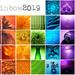 Rainbow 2019 by m2016