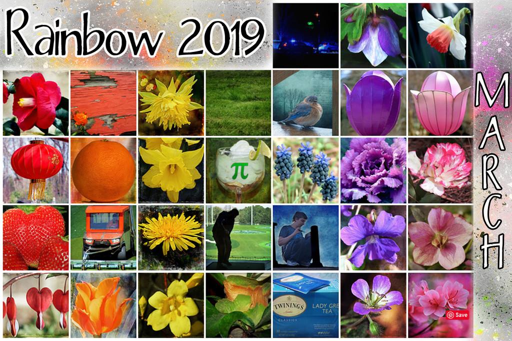 Rainbow 2019 Calendar by dsp2