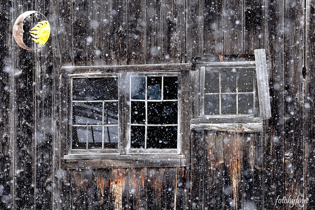 Window into the barn! by fayefaye