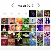 31st Mar 2019 - My 2019 Rainbow