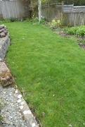 1st Apr 2019 - got my grass cut ('before' shot)