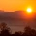 Sunburst by pamknowler