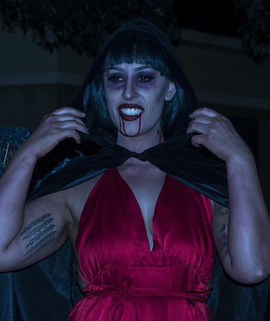 vampire shoot 2 by winshez