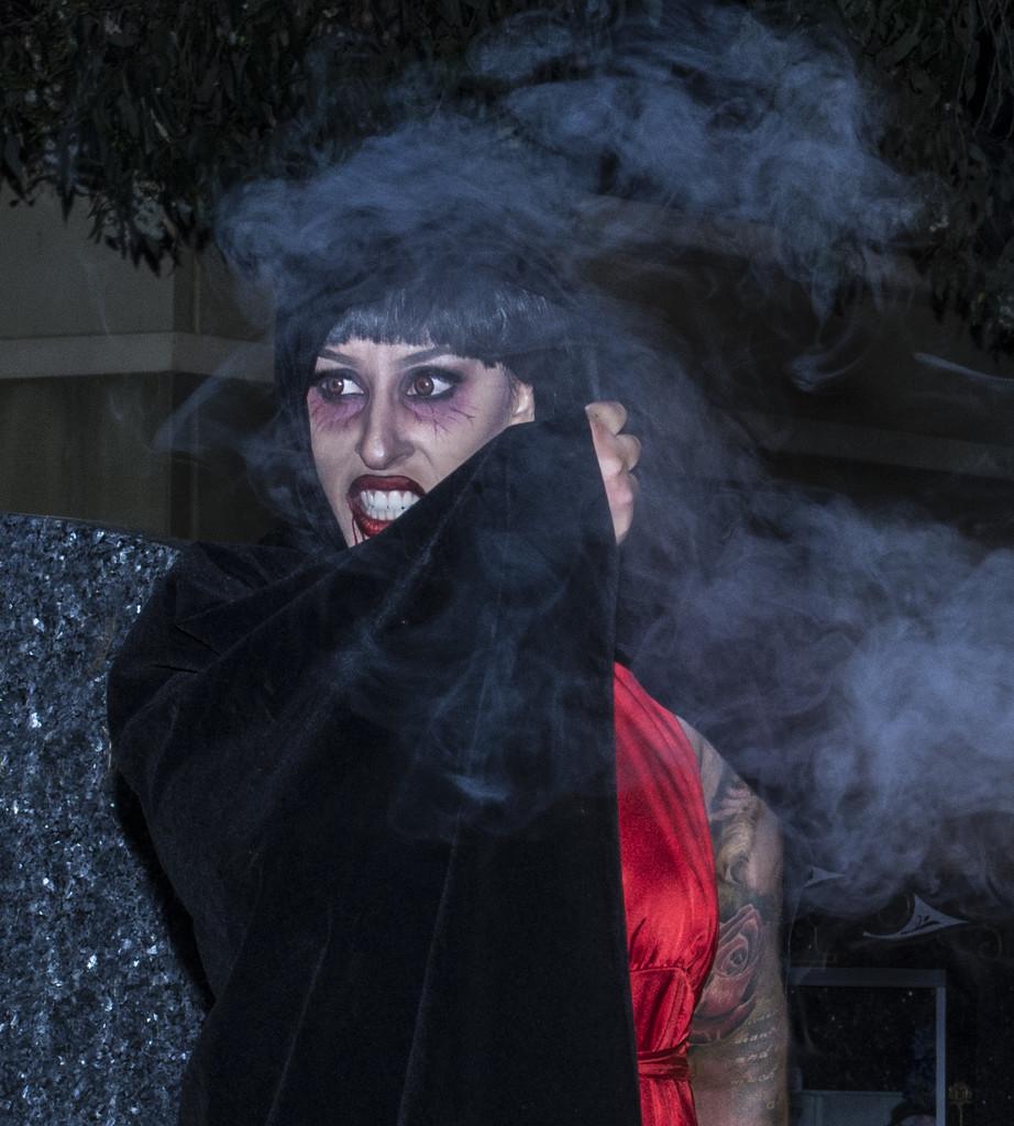 vampire shoot 3 by winshez