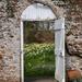 Secret Garden by phil_sandford