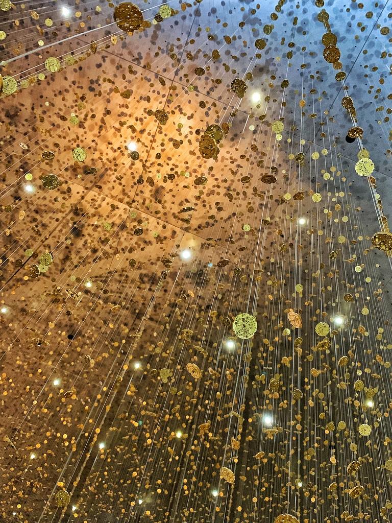 Golden rain.  by cocobella