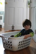 1st Apr 2019 - Baby laundry sled