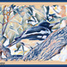 Butcher bird by koalagardens