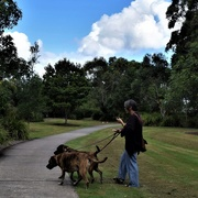 5th Apr 2019 - Two Large Dogs & A Mobile Phone ~