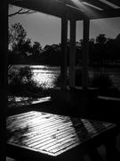 5th Apr 2019 - Morning light