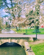 6th Apr 2019 - Bourton-on-the-Water