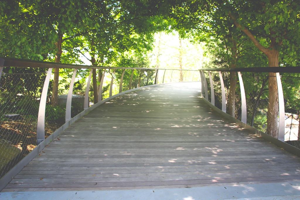 Path by judyc57