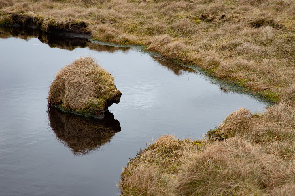 Moorland Monster by lifeat60degrees