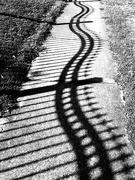 11th Apr 2019 - Shadow curves