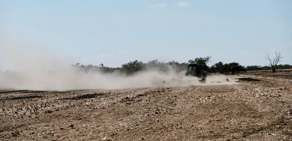 Dusty 2 by golftragic