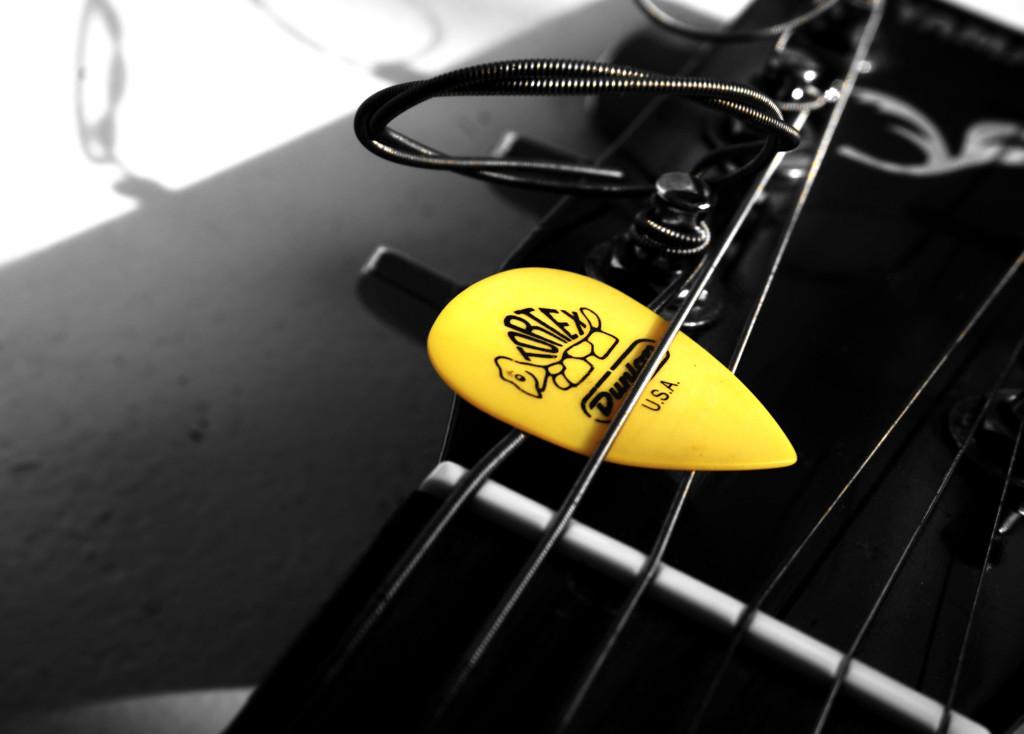 Yellow plec by m2016