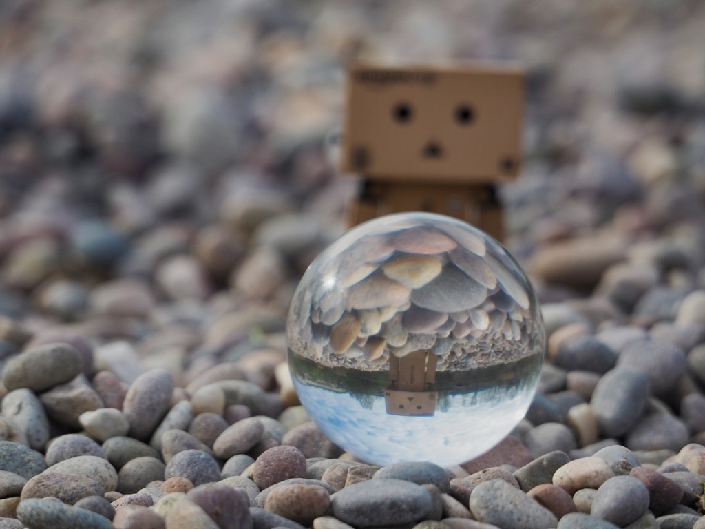 Danbo loved 'the beach' at Bluewater by bizziebeeme