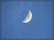 11th Apr 2019 - Half Moon on April 11th
