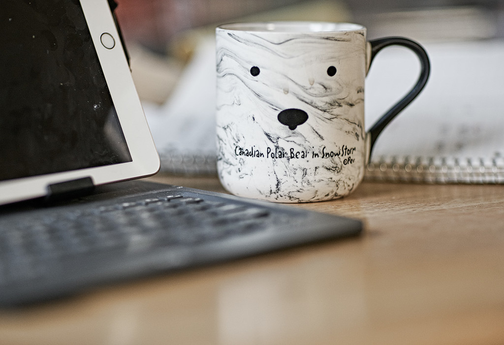 Polar Mug by gardencat