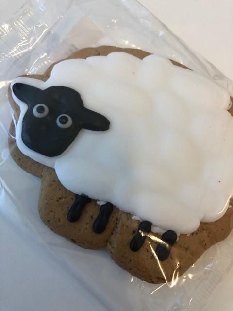 Steve the Sheep by nicolaeastwood