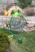 12th Apr 2019 - A Frog Birdfeeder?